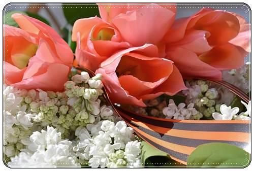 Красивые поздравления с 9 мая в стихах