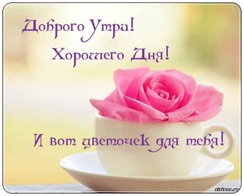 Пожелание доброго утра прекрасного дня красивые