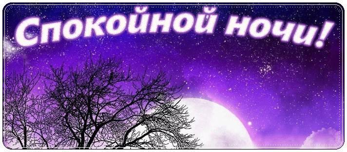 Спокойной ночи любимая стихи
