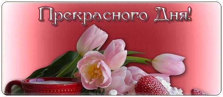 Красивое пожелание прекрасного дня