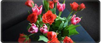 Красивые поздравления с 8 марта бабушке в стихах и своими словами
