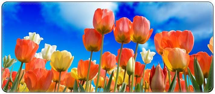 Красивое поздравление с 8 марта маме в стихах, прозе и короткие