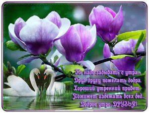 Пожелания с добрым утром друзьям в прозе