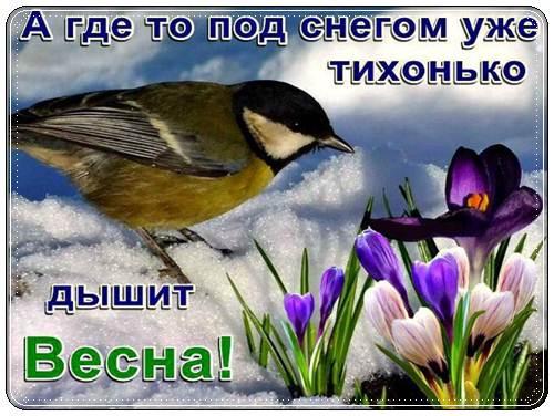 Весна ты где?