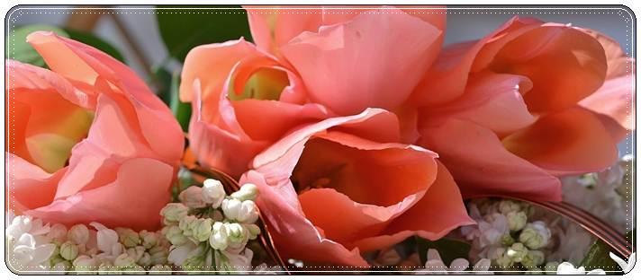 Поздравления с днем победы короткие: красивые пожелания на 9 мая