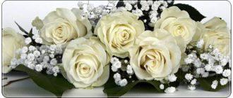 Поздравления на свадьбу в стихах: красивые пожелания