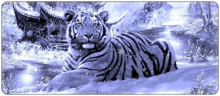 Поздравления с Новым годом Тигра 2022 в стихах